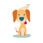 Cuidador/a perro