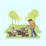 Paseo  para perros