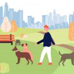 Busco trabajo como paseadora de perros