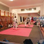 Monitor de artes marciales