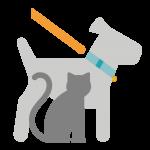 Pasear o cuidar mascotas