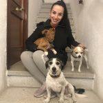Allotjament i passejadora canina a Vilafranca
