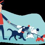 Cuidador de mascotas y Paseador canino.