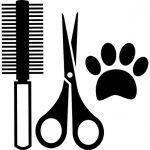 Buscamos peluquero/a canino