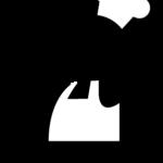 Ayudante de cocina y barra
